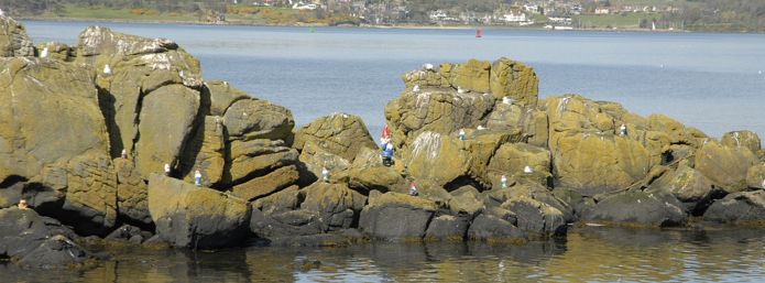 The Inchcolm Gnomes